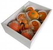 柑橘食べ比べbox/自信を持ってお薦めする柑橘5種