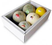 メロン食べ比べbox/melon5種類〜夢の競演