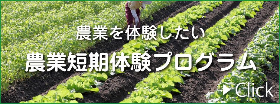 農業を体験したい・農業短期体験プログラム