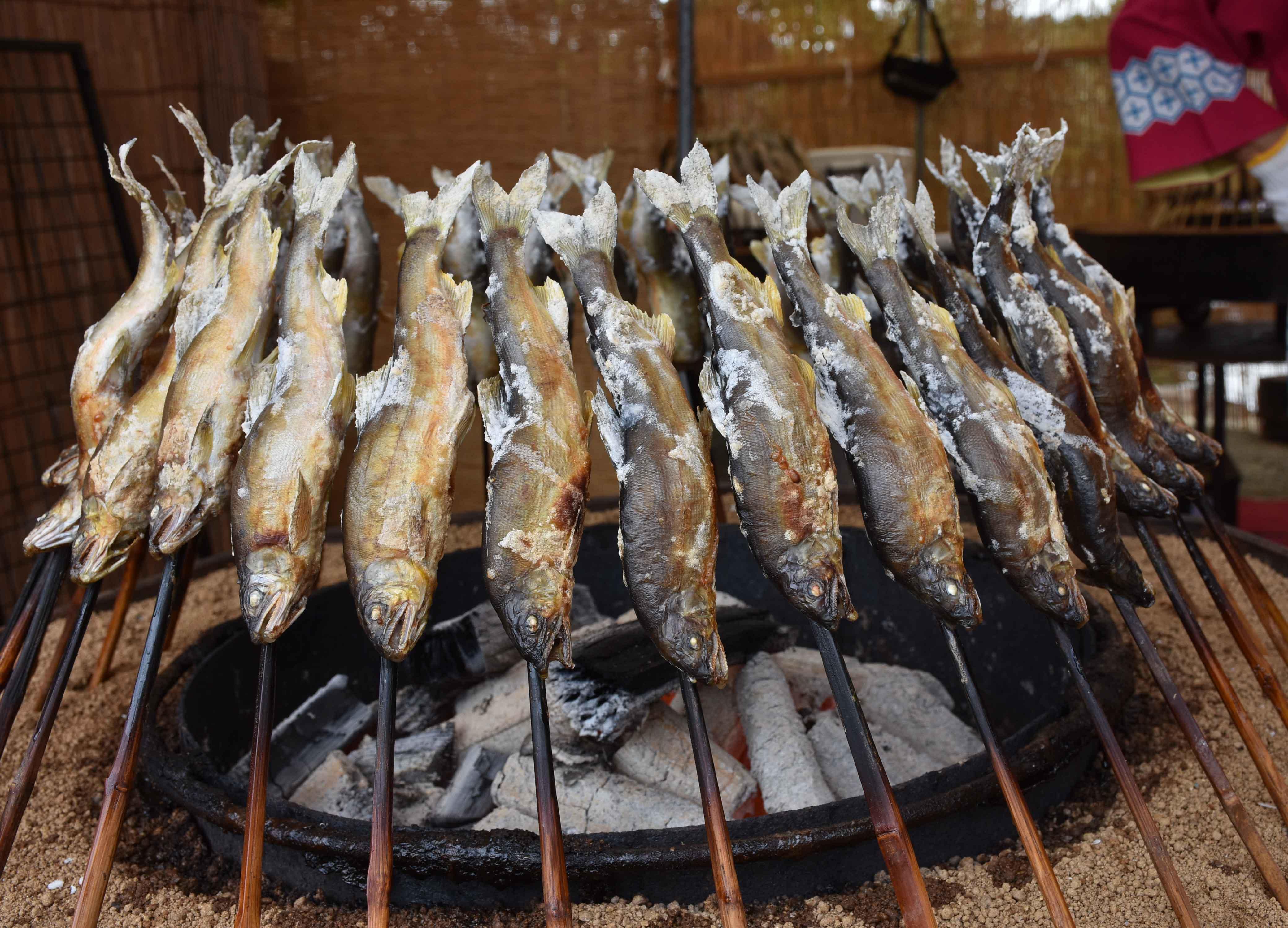 「第44回白鷹鮎まつり」開催中止について:画像