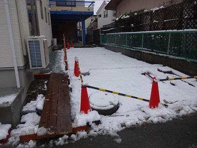 なごり雪・・・:画像