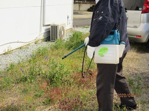 駐車場除草処理作業:画像