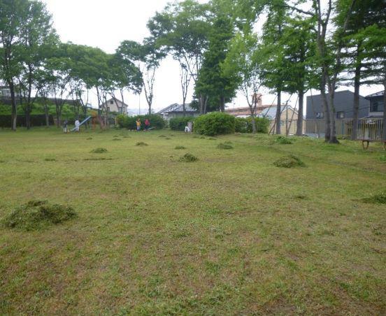 草刈りボランティア:画像