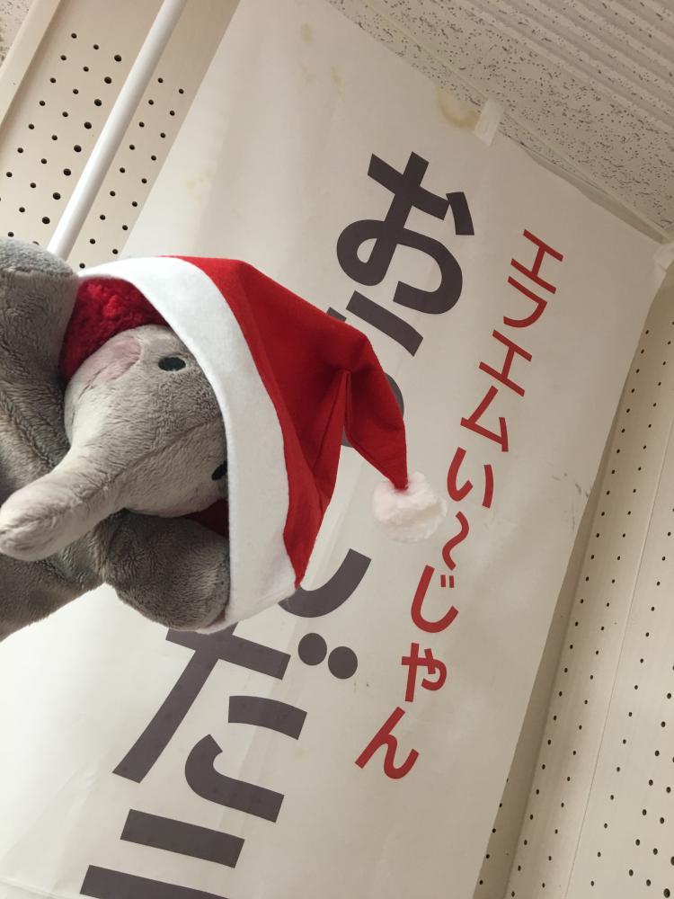 (少し早いですが…)メリークリスマス♪:画像