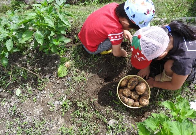 子どものため家庭菜園のできるマイホーム:画像