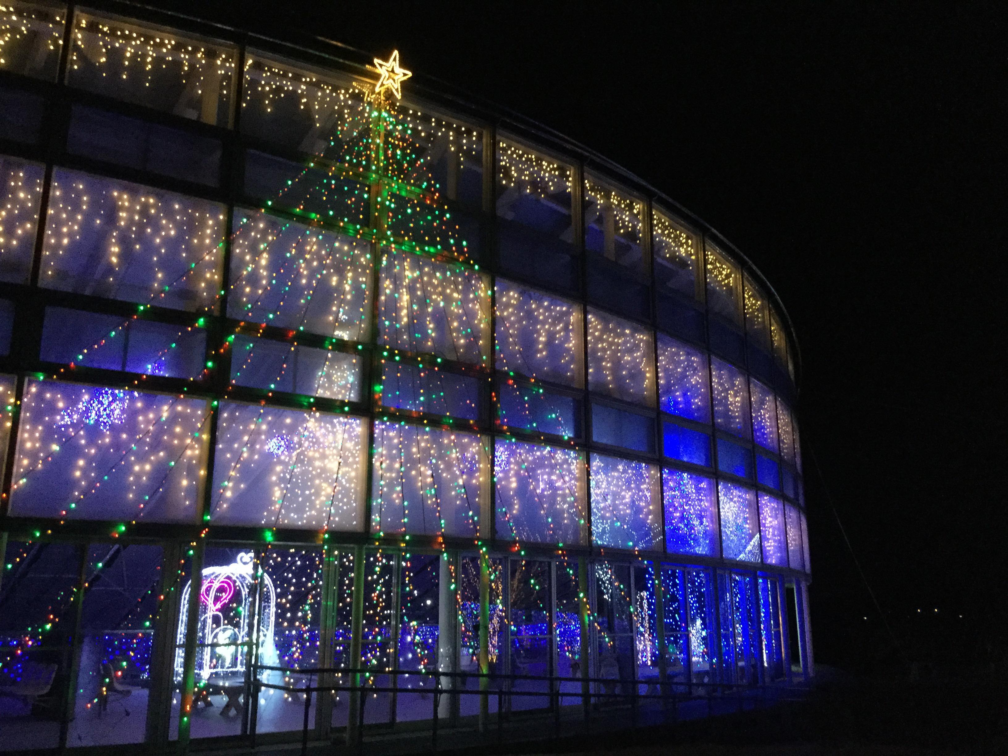 【やまがた雪フェスティバル】イルミネーション点灯☆