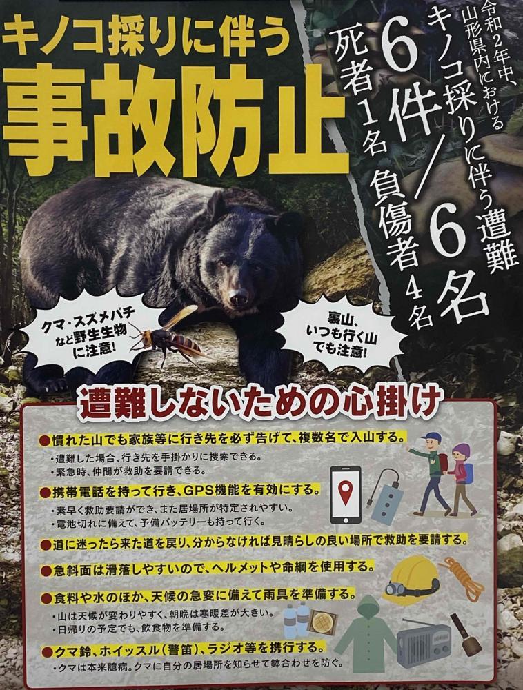 きのこ採りに伴う事故防止について!:画像