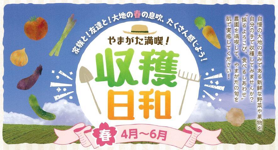 やまがた満喫!収穫日和(春版)を実施します!!:画像