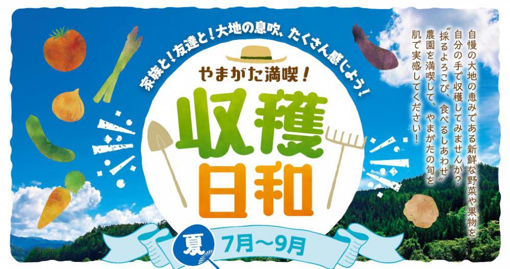 やまがた満喫!収穫日和(夏)開始のお知らせ:画像