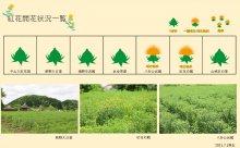 2021.7.1 紅花畑:画像