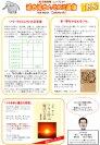 2009☆1月号 ゾウ・プロジェクトの正念場☆:画像
