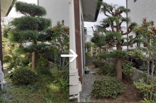 お庭さっぱりしました!:画像