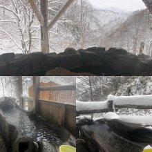 冬が始まるよぉ〜♪ ほら(^_-)-☆ 令和の積雪記録更新!:画像