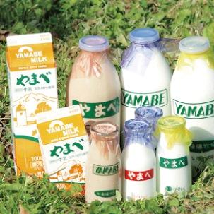 やまべ牛乳 〜本物のおいしさ〜