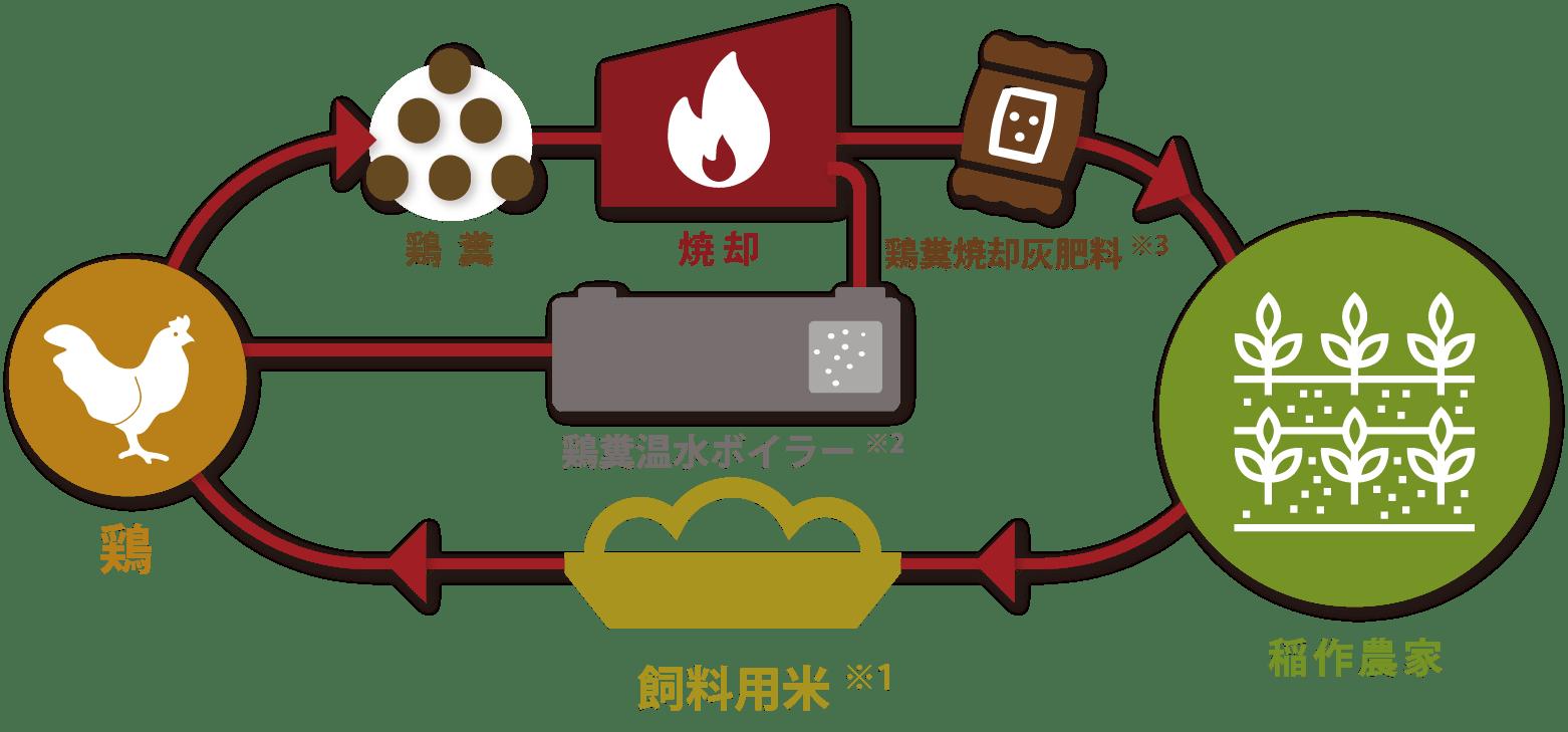 循環型農業のイメージ図