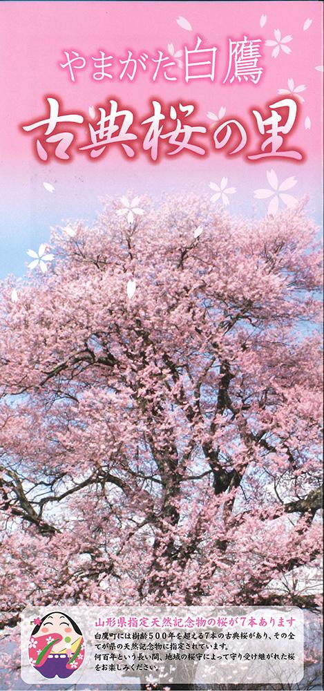 やまがた白鷹古典桜の里パンフレット