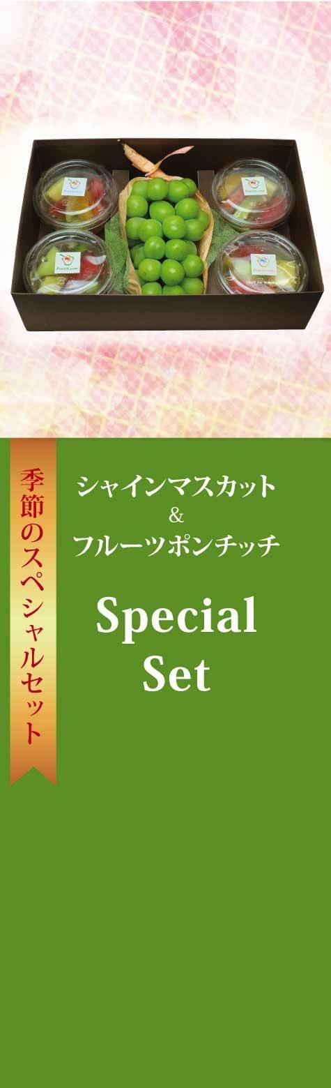 シャインマスカット&フルーツポンチッチ・Specialセット