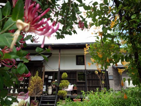 cafe'gallery美蔵:画像