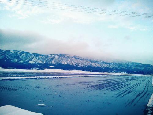冬の一枚:画像