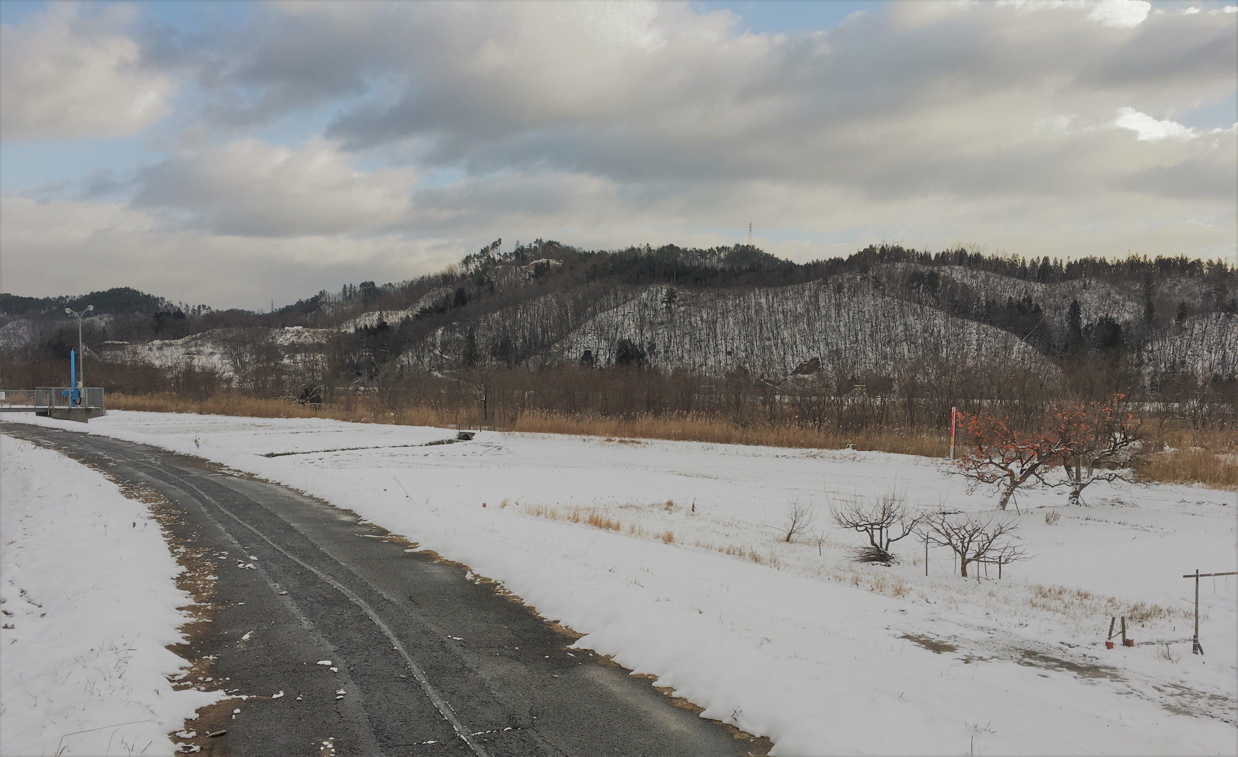 今日の最上川近辺:画像