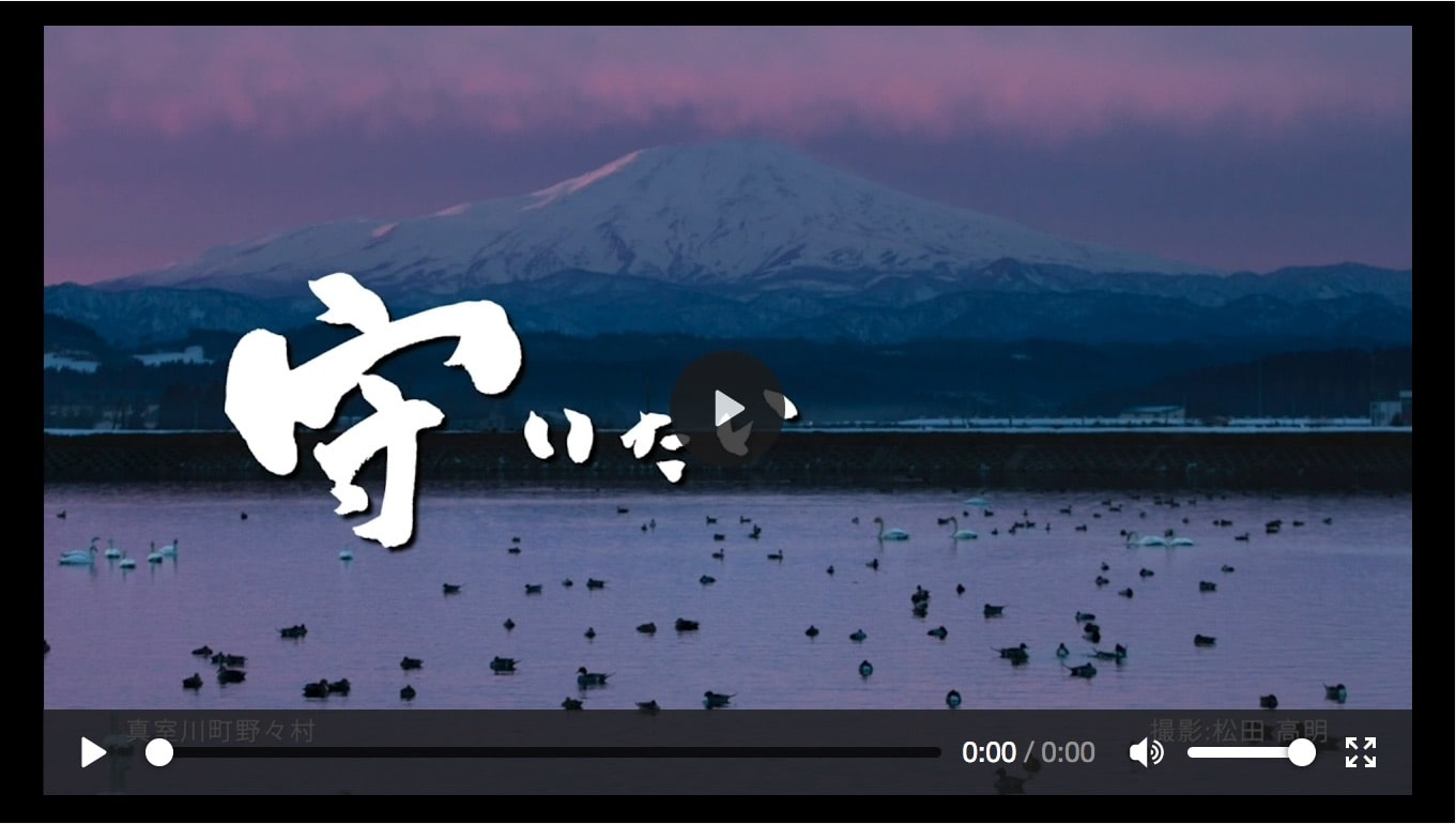 TVコマーシャル集 - MOVIE