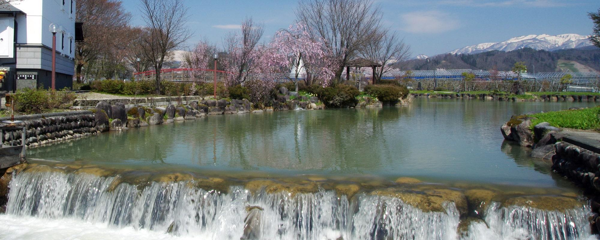 春の二の堰