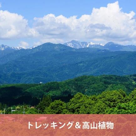 【日本百名山inやまがた】 トレッキング&高山植物